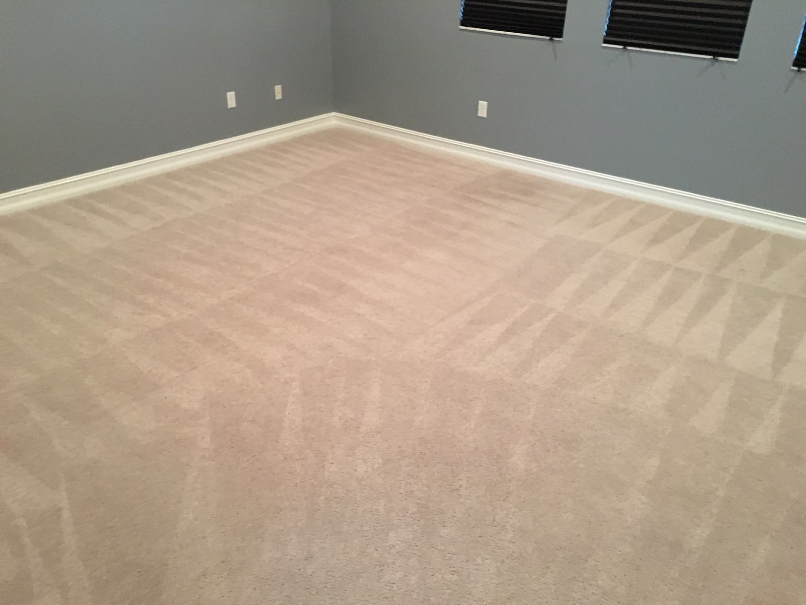 Prime Steamers - Carpet Cleaning Coral Springs 3 954-496-2289
