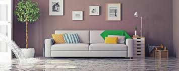 Prime Steamers - carpet drying coral springs 954-496-2289